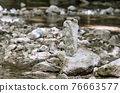 Stacked rocks, balancing in a streambed. Balanced rock pile at a creek, with a small red ladybug on top, surrounded by a creek. Rocks laid flat upon each other. Art form and leisure activity. Photo. 76663577