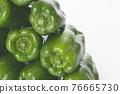 Bell Peppers, bell pepper, green pepper 76665730