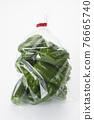 Bell Peppers, bell pepper, green pepper 76665740