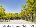 yoyogi park, spring, april 76666593