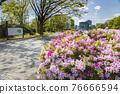 Spring Yoyogi Park 76666594