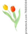 花朵 花 花卉 76669364