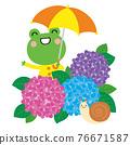 青蛙 雨季 梅雨 76671587