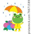 青蛙 雨季 梅雨 76671589