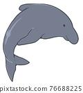 Dolphin 01 76688225