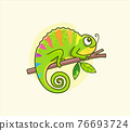 Funny colorful chameleon sitting on the branch. 76693724