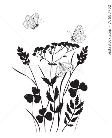 Monochrome Composition with  Butterflies and Wildflowers 76693762
