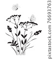 Monochrome Composition with  Butterflies and Wildflowers 76693763