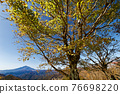 View of Mt.Fuji and autumn leaves of Mt. 76698220