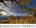 View of Mt.Fuji and autumn leaves of Mt. 76698221