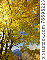 View of Mt.Fuji and autumn leaves of Mt. 76698223