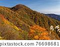 mountain, tanzawa, autumn 76698681