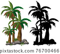 Palm tree and its silhouette on white background 76700466