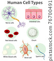 Information poster on human cells 76700491