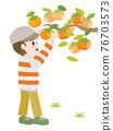 日本柿 甜柿 柿子 76703573