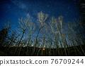 銀河 森林 樹林 76709244