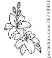 Bouquet of blooming lilies. vector illustration. 76710913