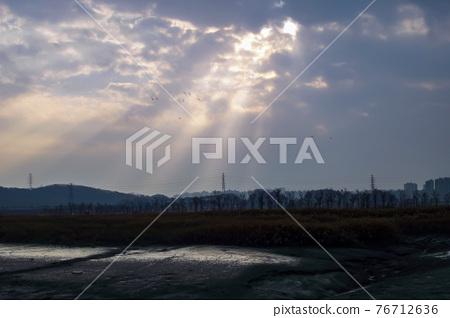 시흥갯골생태공원,시흥시,경기도 76712636