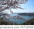 cherry blossom, spring, Seto Inland Sea 76716566