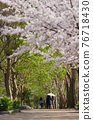 cherry blossom, cherry tree, female 76718430