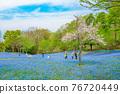 林草屬植物(一種園藝觀賞植物) 花園 花朵 76720449