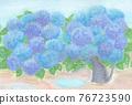 繡球花 花朵 花 76723590