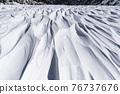 沙紋 在沙灘上的風鐵藝圖案 寒冬 76737676