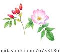 flower, flowers, rosehip 76753186