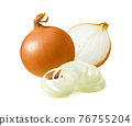Fresh yellow onion and rings isolated on white background 76755204
