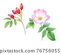 flower, flowers, rosehip 76756055
