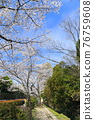 philosopher's walk, lake biwa canal, kyoto 76759608