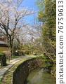 philosopher's walk, lake biwa canal, kyoto 76759613