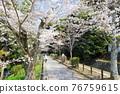philosopher's walk, lake biwa canal, kyoto 76759615