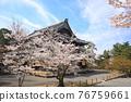 nanzenji temple, kyoto, cherry blossom 76759661