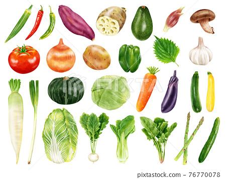 水彩插圖蔬菜集 76770078