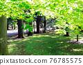 verdure, park, parks 76785575