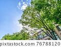 翠綠 鮮綠 建築 76788120