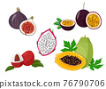 Set of tropical fruits isolated on white background. Fresh exotic natural meal vector illustration. 76790706