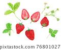 水彩畫 水彩 花朵 76801027