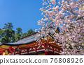 神殿 櫻花 櫻 76808926
