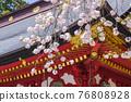 神殿 櫻花 櫻 76808928