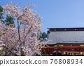 神殿 櫻花 櫻 76808934