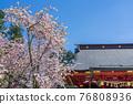 神殿 櫻花 櫻 76808936
