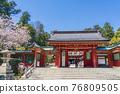 神殿 櫻花 櫻 76809505