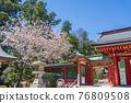 神殿 櫻花 櫻 76809508