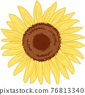 Sunflower 01 76813340