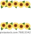 bloom, blossom, blossoms 76813342