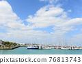 Okinawa, blue water, marine 76813743