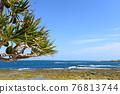 Okinawa, blue water, marine 76813744