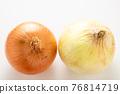 洋蔥 新鮮洋蔥 比較 76814719